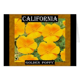 California Golden Poppy Card