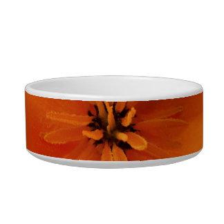 California Golden Poppy Macro Bowl
