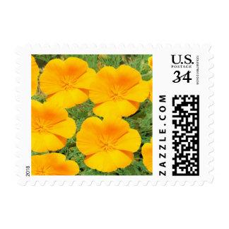 California Golden Poppy Postage