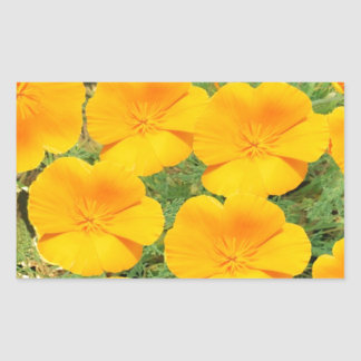 California Golden Poppy Rectangular Sticker
