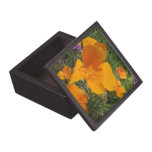 California Golden Poppy Trinket Gift Box Premium Keepsake Box