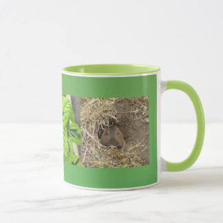 California Gopher Mug