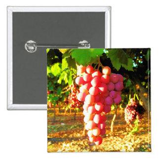 California Grapes Button