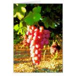 California Grapes Notecards Card