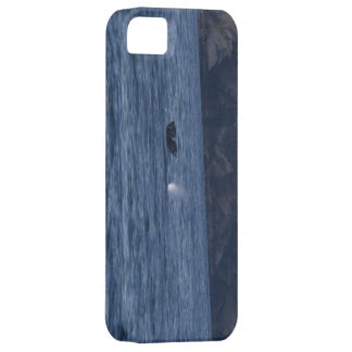 California Grey Whale and Blow iPhone 5 Cover