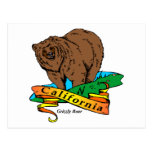 California Grizzly Postcard