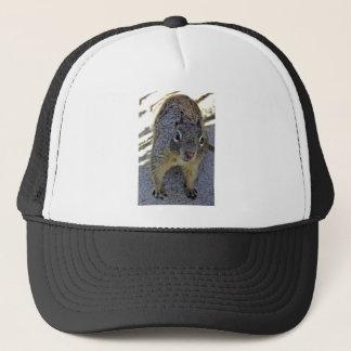 California Ground Squirrel Trucker Hat