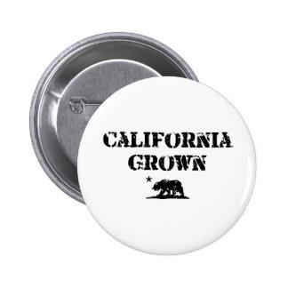 California Grown Bear Pinback Buttons