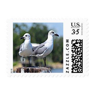 California Gull (Utah) Postage
