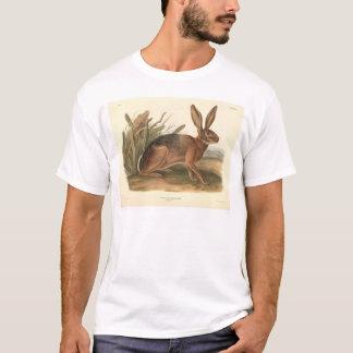 California Hare by Audubon (0177A) T-Shirt
