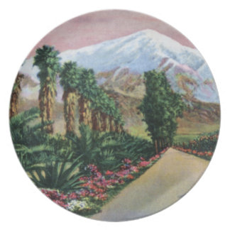California in Midwinter Plate