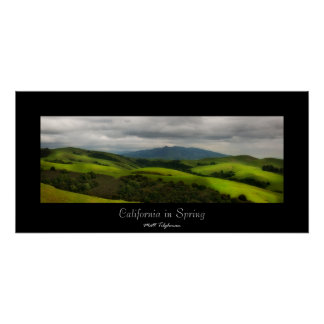 California in Spring Posters