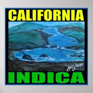 CALIFORNIA INDICA PRINT