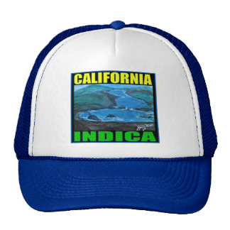 CALIFORNIA INDICA TRUCKER HAT