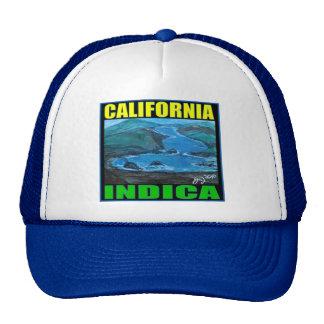 CALIFORNIA INDICA TRUCKER HAT