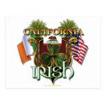 California Irish Pride Postcard
