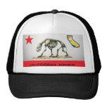 California is REALLY POOR Mesh Hats