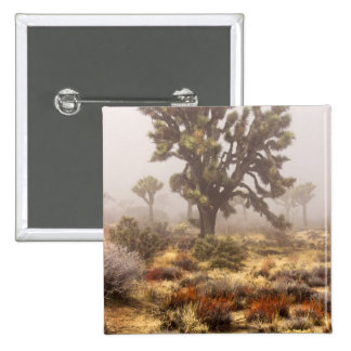 California: Joshua Tree National Monument, 2 Inch Square Button