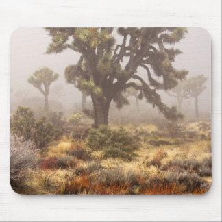 California: Joshua Tree National Monument, Mouse Pad