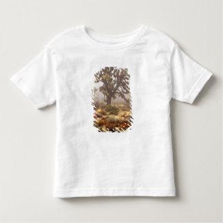 California: Joshua Tree National Monument, Toddler T-shirt