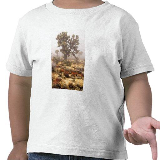 California: Joshua Tree National Monument, Tshirts