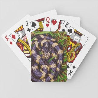 California Kingsnake Playing Cards