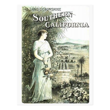 California Land Of Sunshine Vintage Postcard