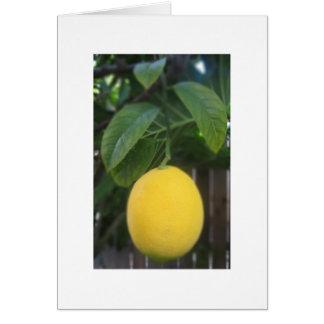 California Lemon Greeting Card