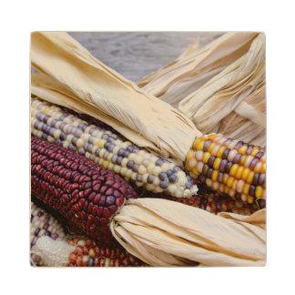California. Maíz indio colorido de la cosecha de Posavasos De Madera