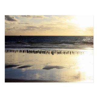 California - Manhattan Beach. K Postcard
