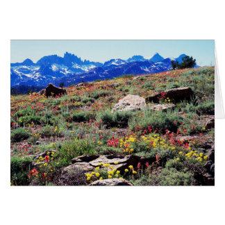 California, montañas de Sierra Nevada 1 Tarjeta De Felicitación