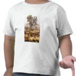 California: Monumento nacional de la yuca, Camisetas