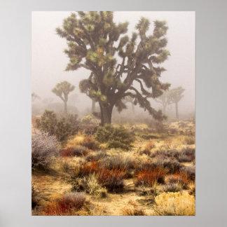 California: Monumento nacional de la yuca, Póster