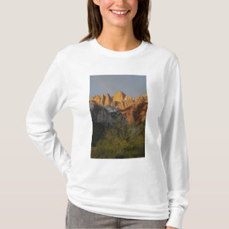 California, Mount Whitney, Inyo National Forest 3 T-Shirt