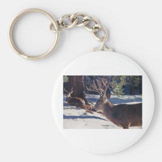 California Mule Deer Keychains