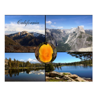 California National Parks Postcard