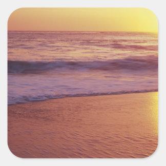 California, near Santa Cruz, View of beach at Square Sticker