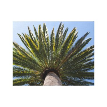 Beach Themed California Palm Tree Canvas Print