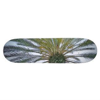 California Palm Tree Skateboard Deck