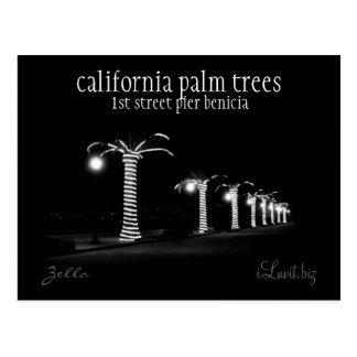 CALIFORNIA PALM TREES by iLuvit.biz - post card