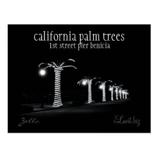 CALIFORNIA PALM TREES by iLuvit biz - post card