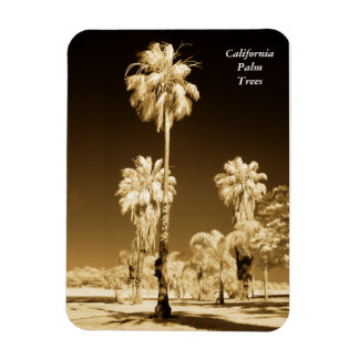 California Palm Trees Infrared Magnet