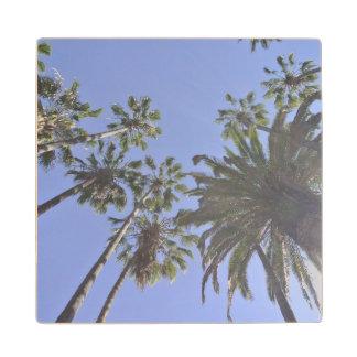 California Palm Trees Wood Coaster