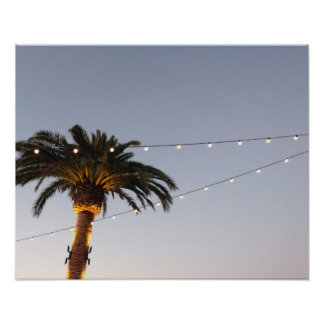 California Palmtree Poster