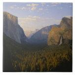 California, parque nacional de Yosemite, Yosemite Azulejo Cuadrado Grande