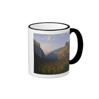 California, parque nacional de Yosemite, Yosemite Taza De Café