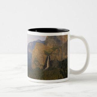 California, parque nacional de Yosemite, Yosemite Tazas De Café
