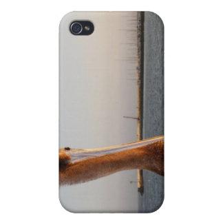 California Pelican iPhone 4 Cases