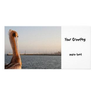 California Pelican Photo Cards