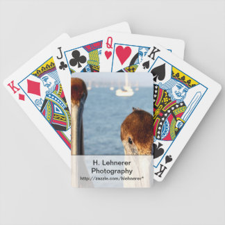 California Pelicans Bicycle Playing Cards